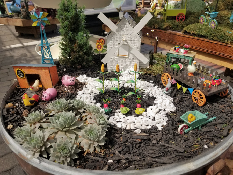 Bloomers Fairy Garden 01