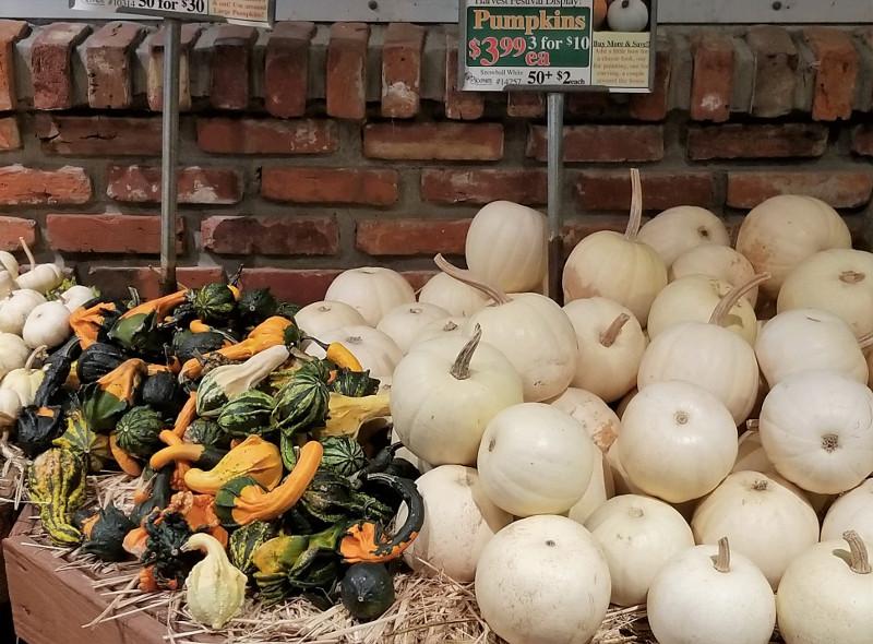 Pumpkins 06