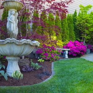 Lighten Up! Brightening and enlivening the shade garden